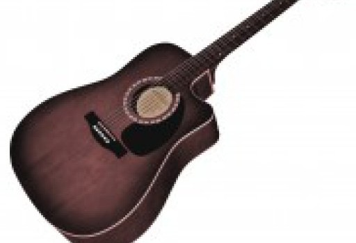 cropped-Gitarre-ohne-Schatten-e1451728985812.jpg